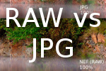 take photos in RAW or JPG